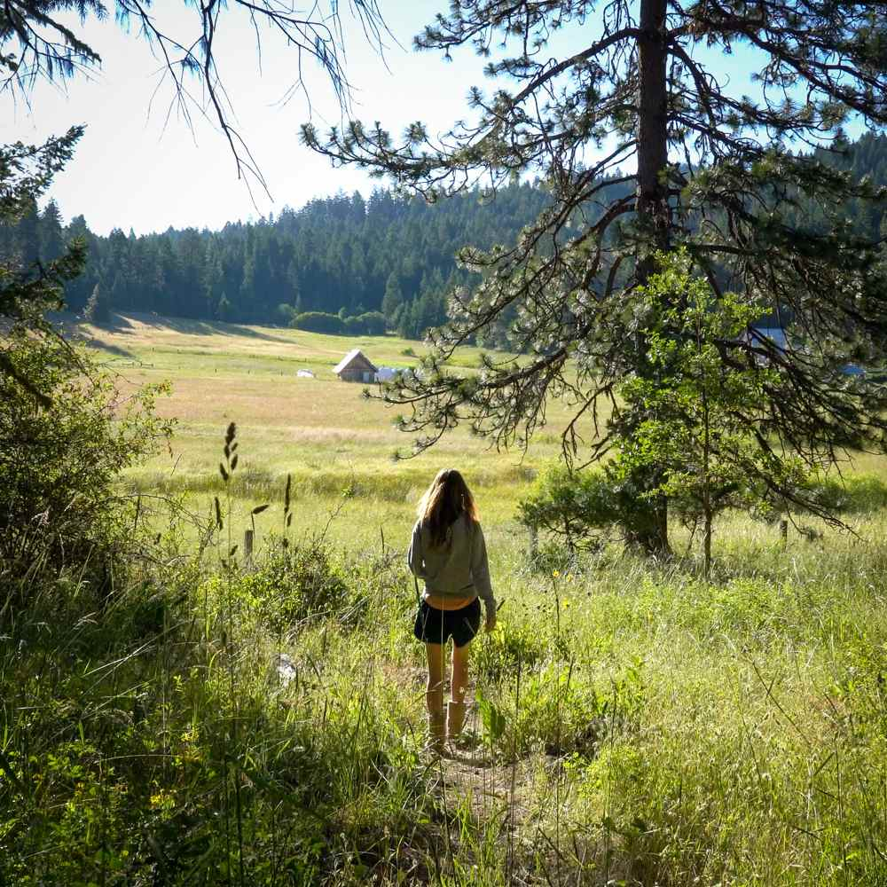hiking trails at Willow-Witt Ranch