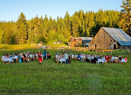 Farm to Table dinner outdoors in pasture at Willow-Witt Ranch